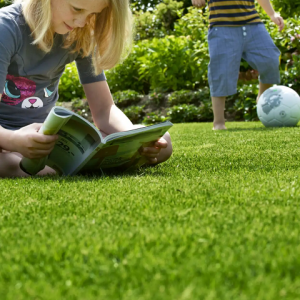 Childs Play Lawn Seed