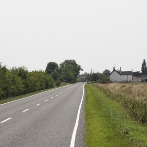 Road Verge and General Purpose with Clover