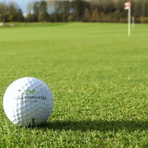 Premier All Bent Greens Grass Seed