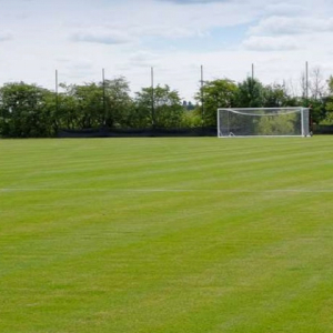 Premier Pitch Grass Seed