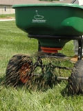 Sowing grass seed for a perfect lawn